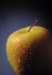 Chi mangia bene e combatte lo spreco alimentare fa bene all'ambiente
