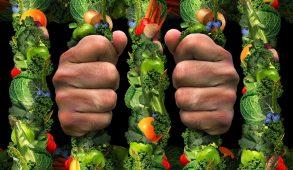 chi soffre di ortoressia rischia di pensare quasi esclusivamente al cibo, scegliendo di rinunciare al gusto e di vivere sottoposto a forti sensi di colpa qualora non segua la dieta autoimposta. E naturalmente dietro l'angolo c'è la solitudine e la depressione! L'ortoressia è studiata da sociologi e psicologi già da diverso tempo con lo scopo di essere pronti ad affrontare le nuove malattie del Millennio.