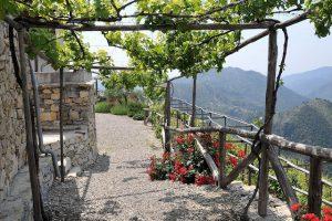 Airole e il roccese, vino recuperato da Dino Masala