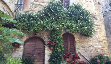 borghi: montefalco