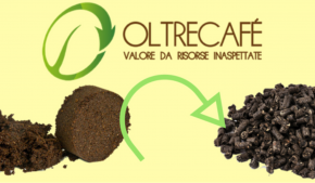 sostenibilità dai fondi di caffè: una realtà dell'economia circolare