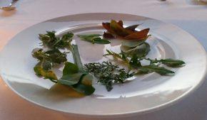 lessico#foodcultural: Terracrèpolo
