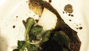 Lessico#foodcultural: lampreda
