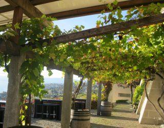 Lausanne à table: viaggio a Losanna alla ricerca della cultura enogastronomica svizzera