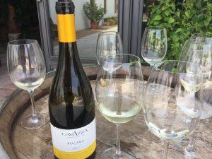 I Colli Berici presentano i loro vini: azienda Cavazza