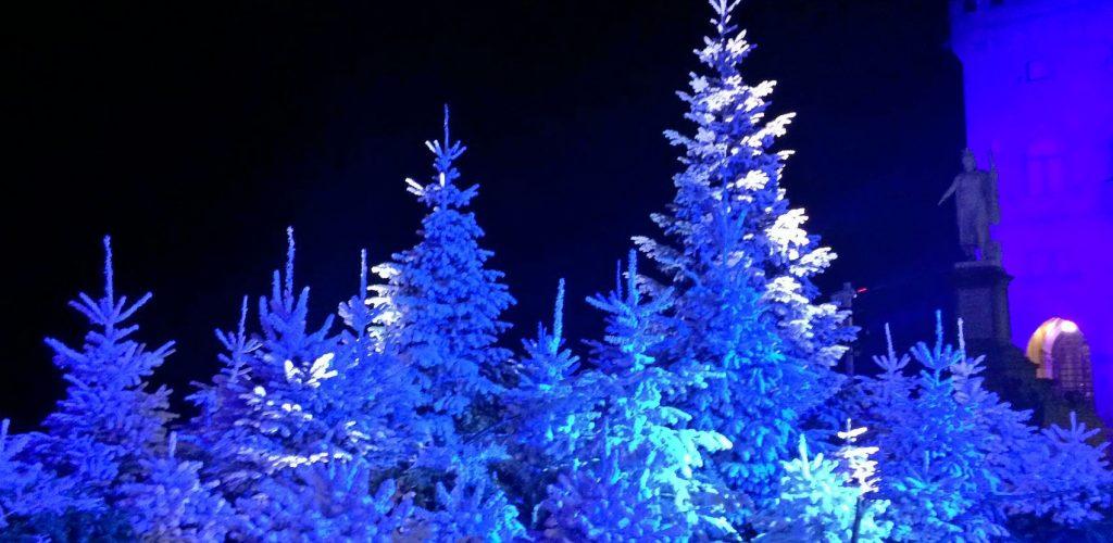 mercatini di Natale, San Marino: il Bosco delle emozioni