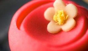 dolci giapponesi: wagashi ph Flavio Gallozzi