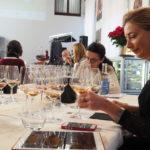 Chiaretto, uno dei vini del lago di Garda: anteprima