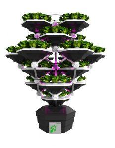 aeroponica, automazione, Sistemi di agricoltura verticale