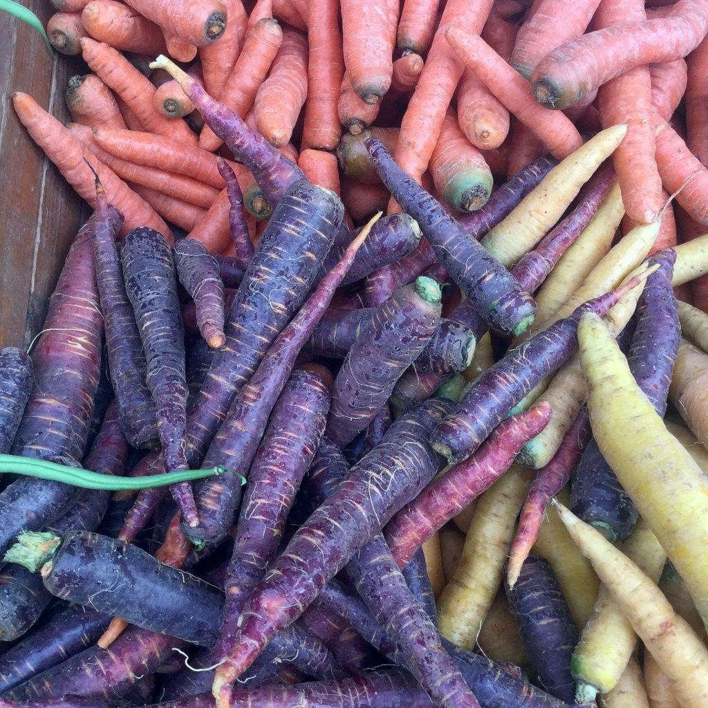 Losannevolmente, ovvero altre scuse fameliche per amare Losanna. Il mercato