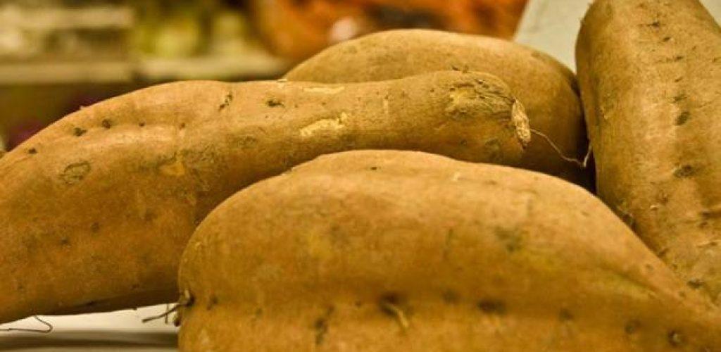 Esistono mille modi di cucinare le patate, ma la patata dell'università non ce l'aspettavamo!!!