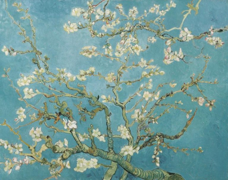 dizionario primaverile famelico:: ramo di mandorlo in fiore di Van Gogh