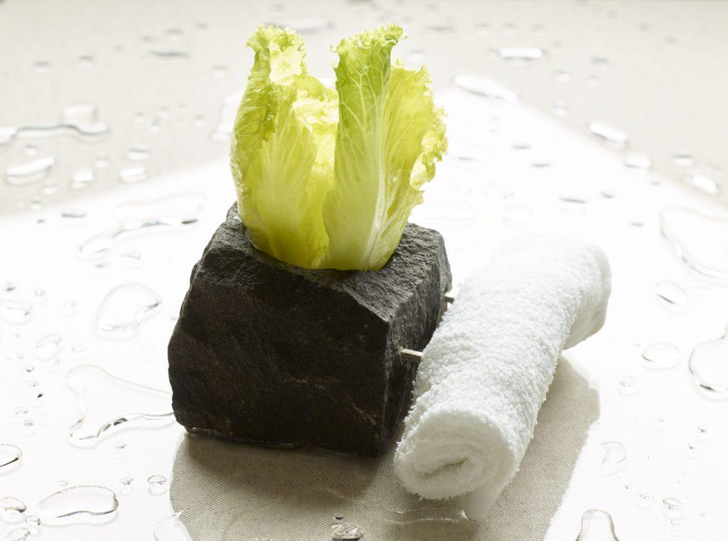 dizionario primaverile, l'ABC Famelico: germinazione del ristorante Aqua Crua