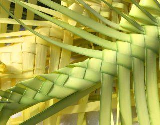 Pasqua in Gallura: intrecci di palme