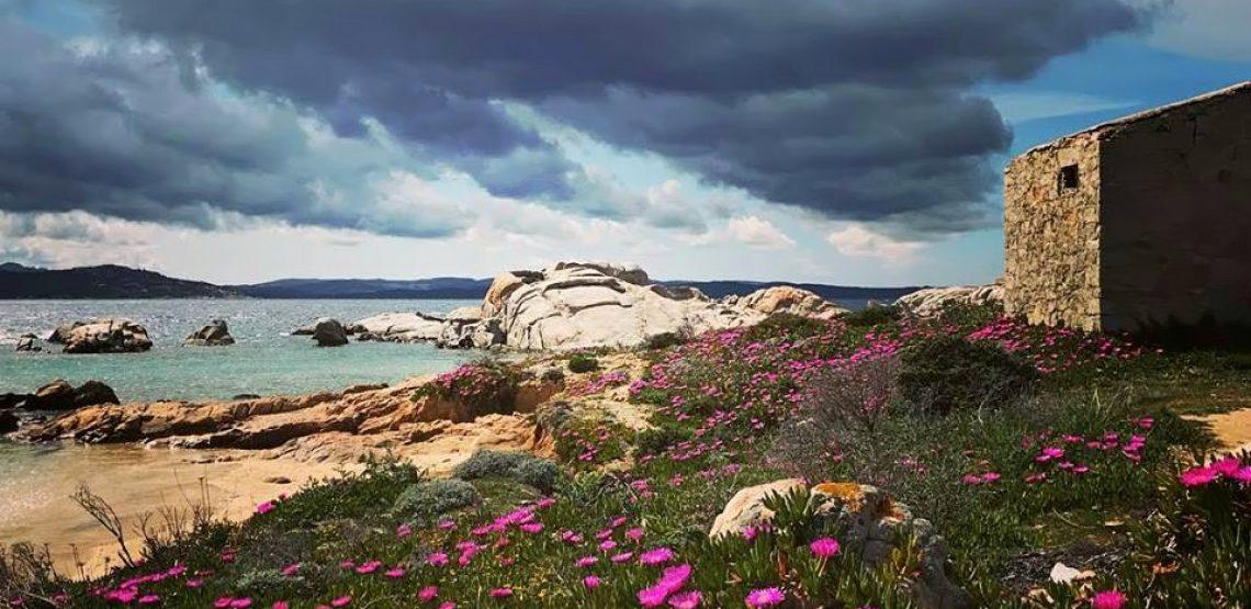 quando andare a la maddalena per scoprire i colori della Sardegna