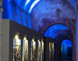 Le cantine di Castello di Castelfalfi