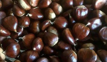 Autunno quli sono i prodotti di stagione: le castagne