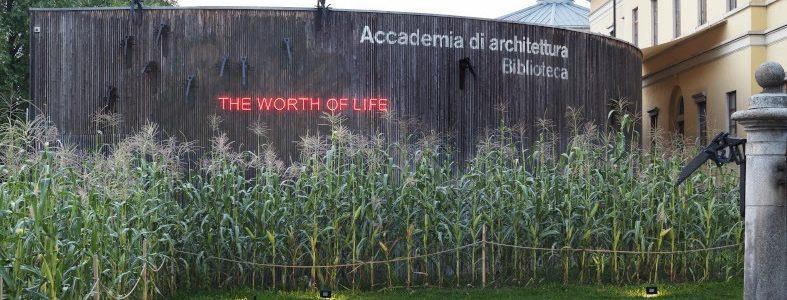 The Worth of Life, Koen Vanmechelen