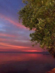 chiaretto, un vino che riprende i colori del tramonto di Barolino