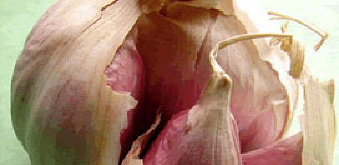 3 ricette umbre: agliata