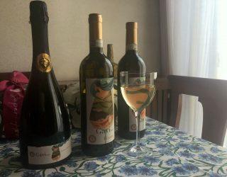 gavi vino terra cortese