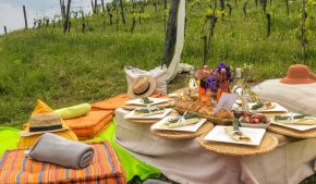 langhe e monferrato: itinerario per un week end in nome del vino e della cultura