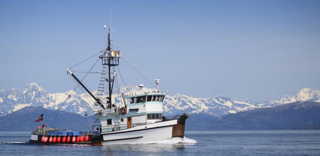 pesca sostenibile settore ittico in crisi