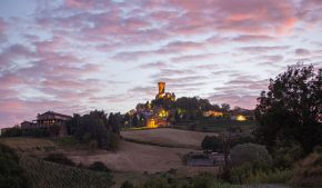 castello di cigognola e il Pinot nero, simbolo dell'Oltrepò pavese