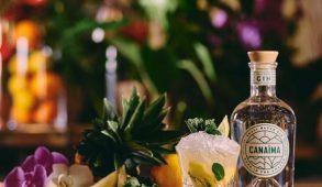 5 cocktail autunnali con gin