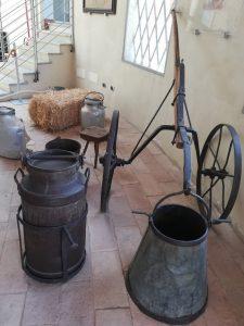 bassa-parmense-museo-del-parmigiano-reggiano